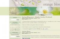 Orange Blossoms blog
