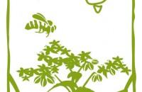 Design for Bio-Oz Buckwheat Packaging