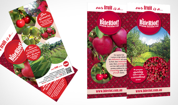Bite Riot brand launch - Flyers and Banner designs