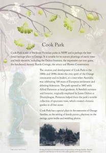 Cook Park panel for Orange Blossoms