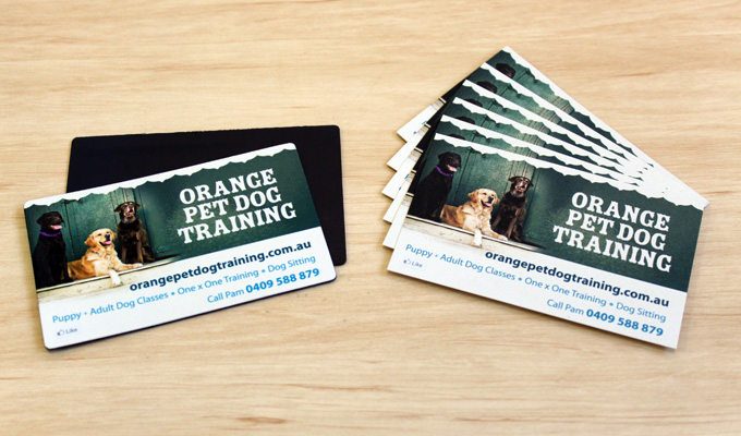 Print web design for orange pet dog training sauce design orange pet dog training business cards magnets colourmoves