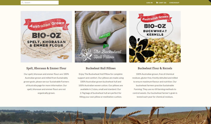 Find out why Shopify eCommerce Store was the best fit for Bio-Oz site relaunch