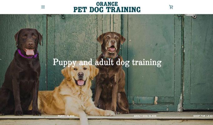 Orange Pet Dog Training ecommerce website