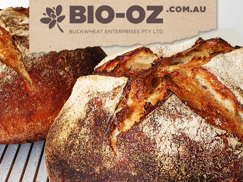 Digital Marketing for Bio-Oz on Facebook and Pintrest and website