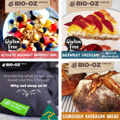 Facebook Social Media Marketing for Bio-Oz